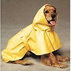 Small Puddles Yellow Raincoat for dogs in Chicago, Illinois